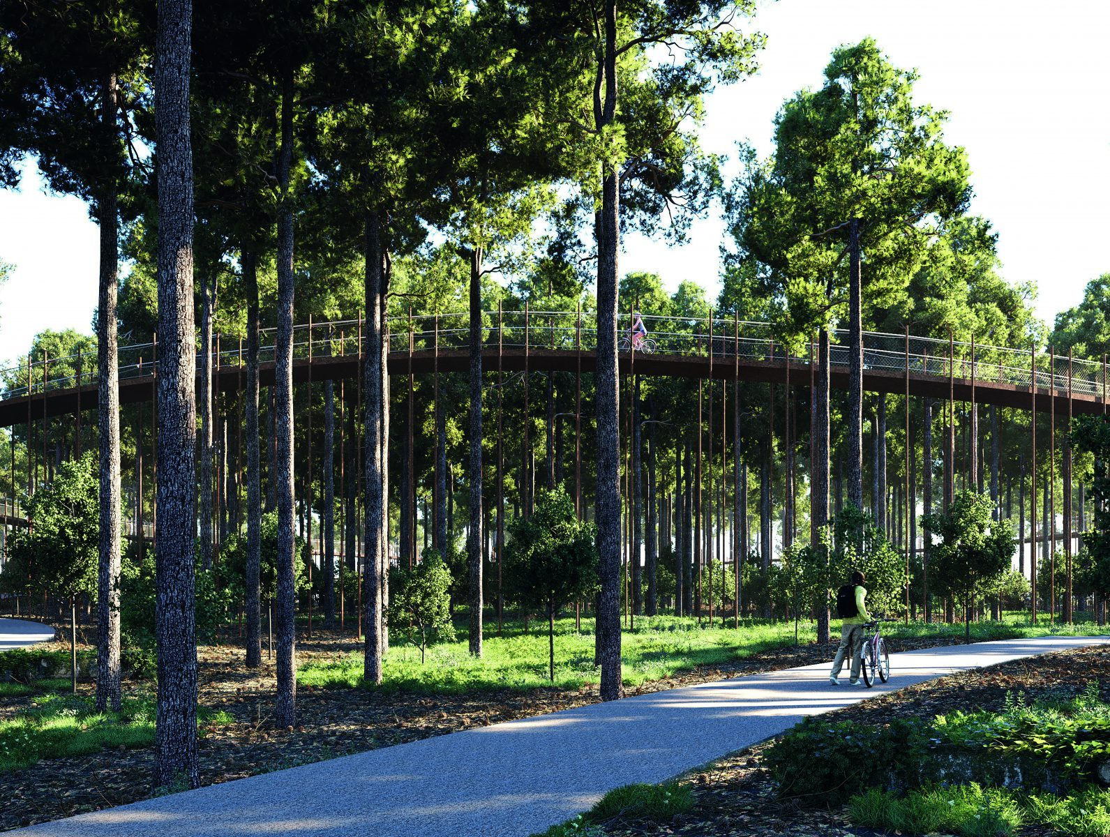 Cycling through the trees | De Gregorio & Partners architecten + BuroLandschap (Limburg, Belgium)