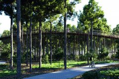 7. Cycling through the trees | De Gregorio & Partners architecten + BuroLandschap (Limburg, Belgium)