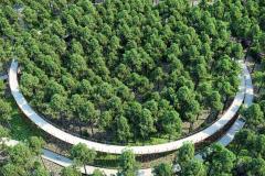 7. Cycling through the trees | BuroLandschap (Limburg, Belgium)